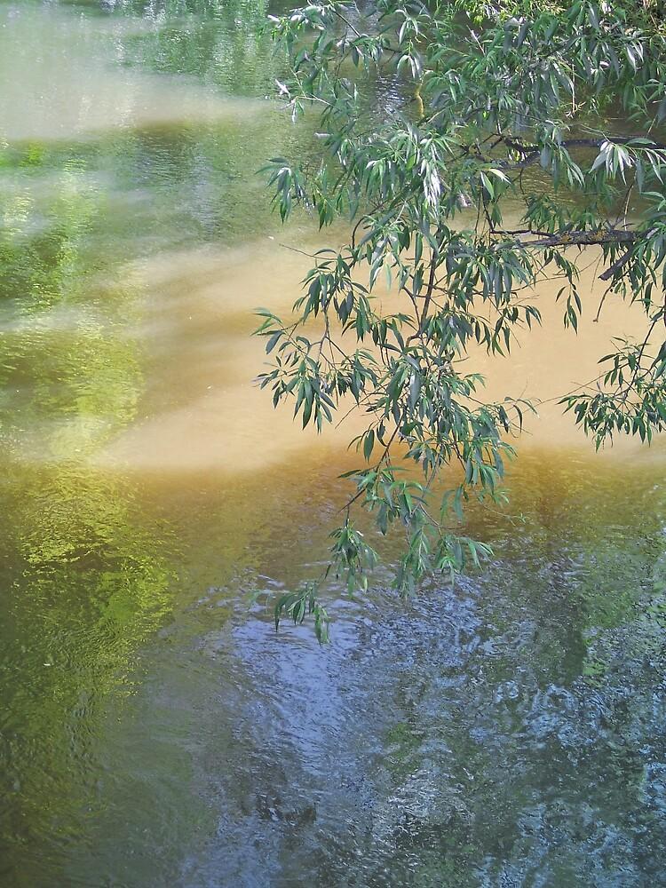 The Brook by simplysuze