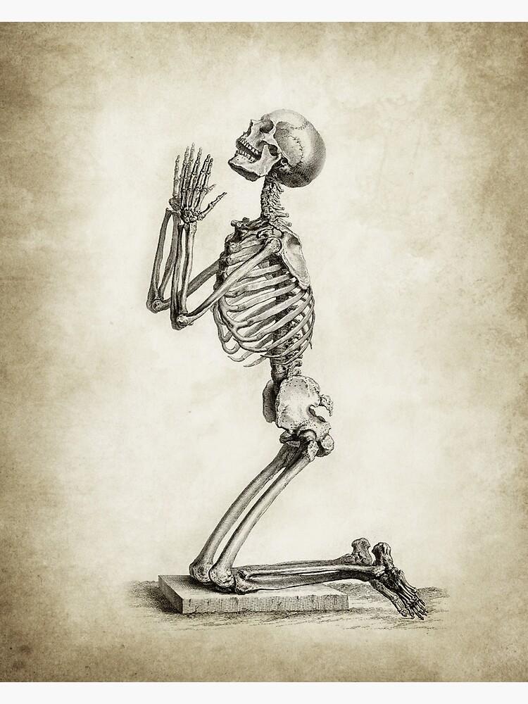 Skeleton In Prayer  by Goshadron