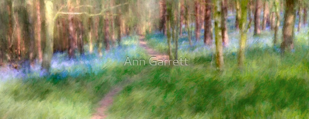 Painted Bluebell Path by Ann Garrett