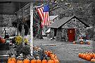 Rural America - Fall Harvest by DJ Florek