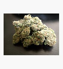 Dank Cookies Buds 420 Cannabis Ganja  Photographic Print