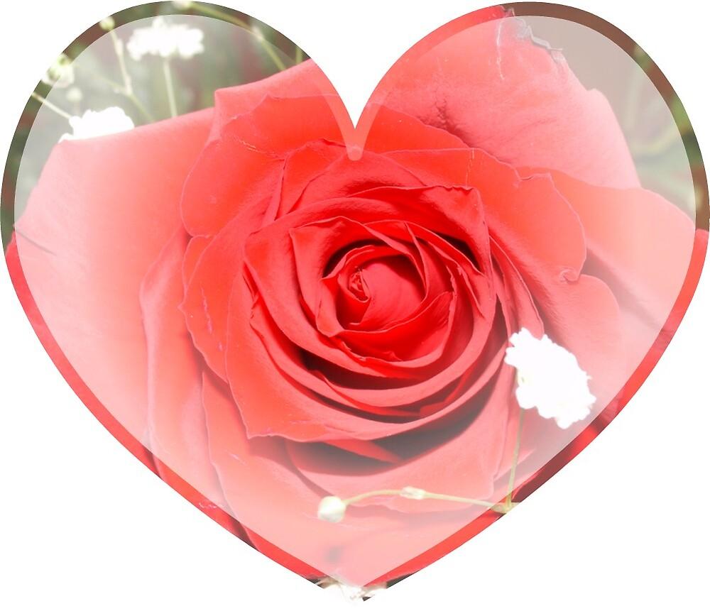 rose in a heart by jdspenguins