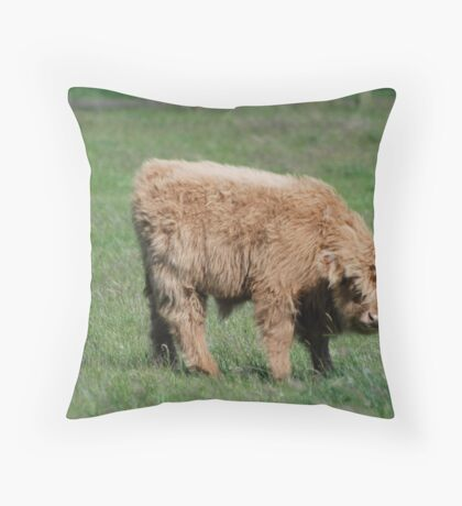Once Upon a Time There Were...... Throw Pillow