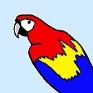 Scarlet Macaw by Hannah Sterry