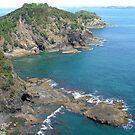 Roberton Island, Bay of Islands  New Zealand. by Roy  Massicks