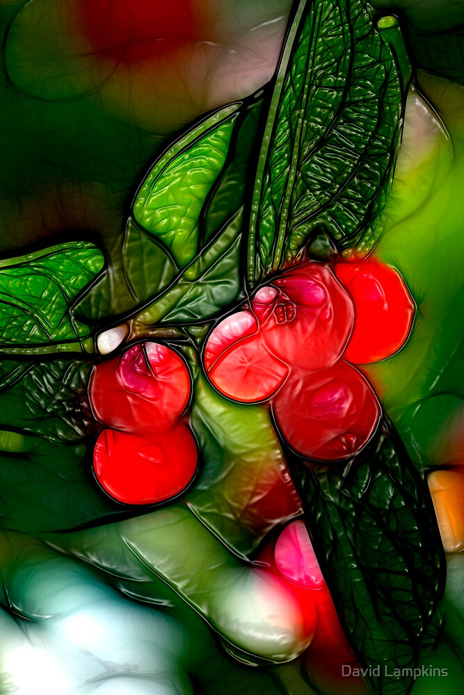 Stained Glass Berries by David Lampkins