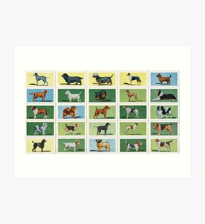Adorable stylised images of dogs. Set of 25 Art Print