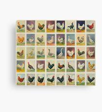 Farmyard Animals set of 45 Canvas Print