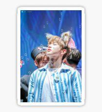 Kang Daniel, Wanna One Sticker