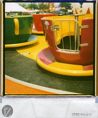 Teacups by Shawn