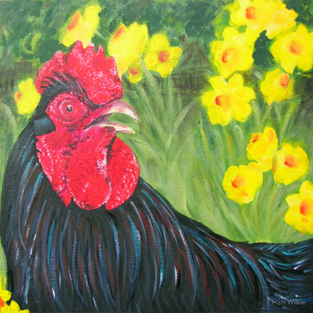 Roger the Rooster by Pam Wilkie