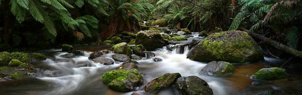 Anouther Creek Pano by Graeme Hort