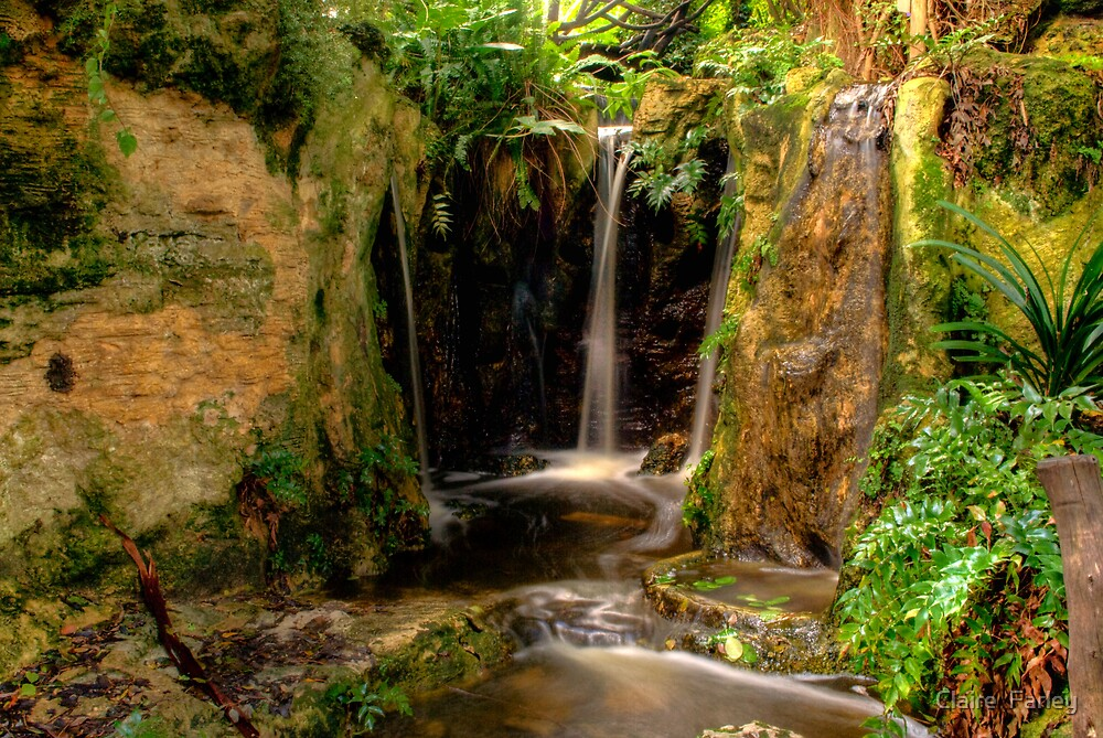 Waterfall by Claire  Farley