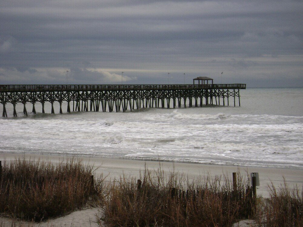 December Beach by Billy Lassen