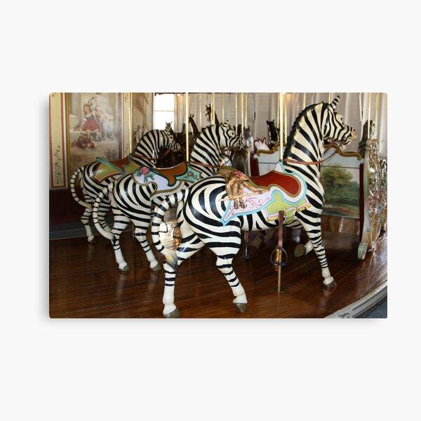 Trio of Zebras of PTC No. 6 Canvas Print