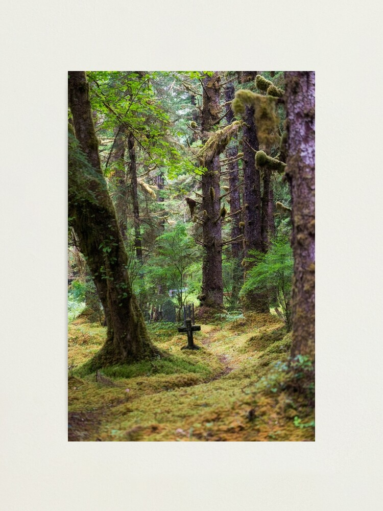 Alternate view of Memory Trail Photographic Print