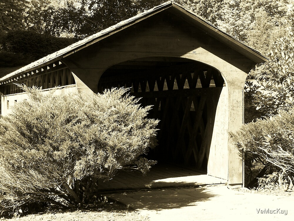 Covered Bridge part 3 by VeMacKay