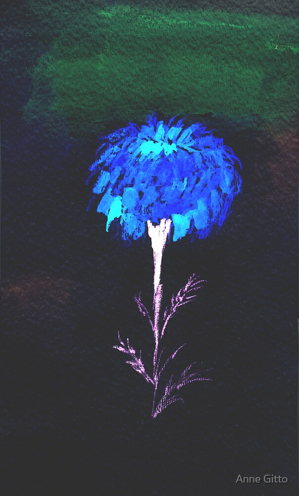 Lone Marigold at night  by Anne Gitto