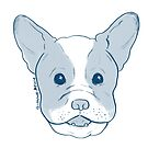 Frenchie - Single Image - Blue by giannameola