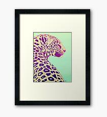 Leopard under the Sun Framed Print