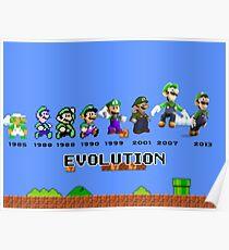 The Evolution of Luigi Poster