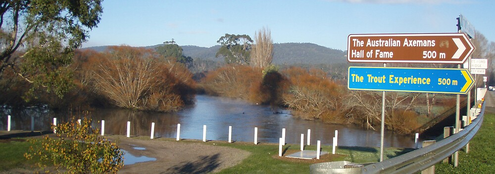 Latrobe 19.7.2008 - 1 degree C at 9am - Mersey River by gaylene