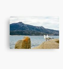 Bettys Beach, Western Australia Canvas Print