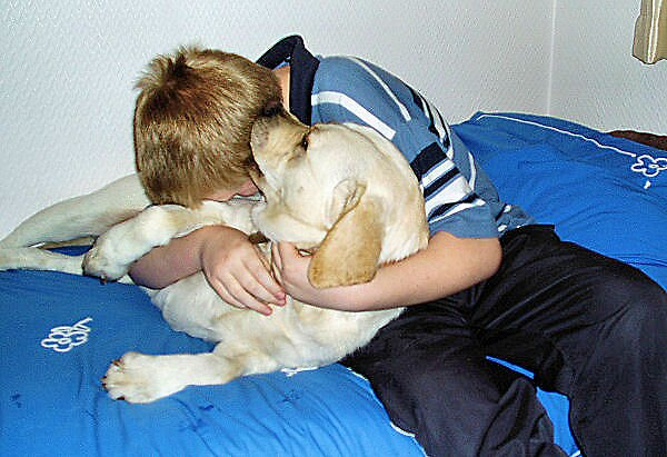 CuddlesChristmas2007 by jennyfnf