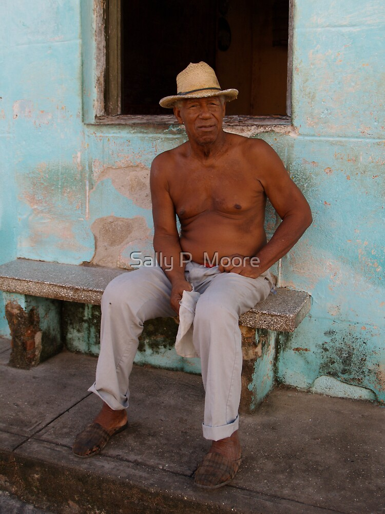 The Cuban  by Sally P  Moore