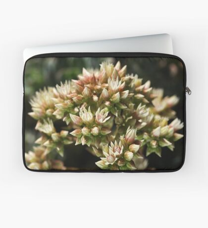 Stages OF Nature Laptop Sleeve