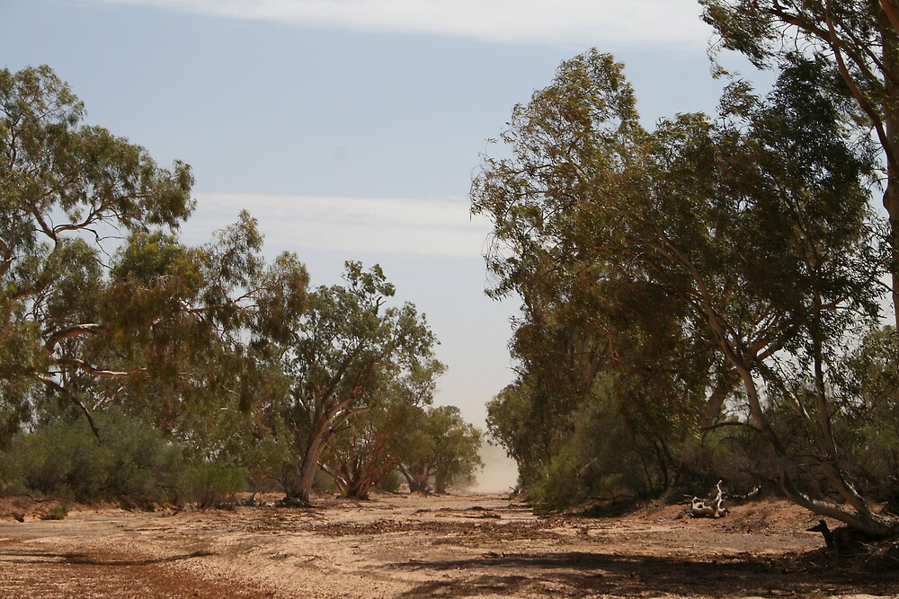 Outback River Australia by Justine Coady