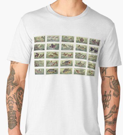 25 Aquarium Fish Men's Premium T-Shirt