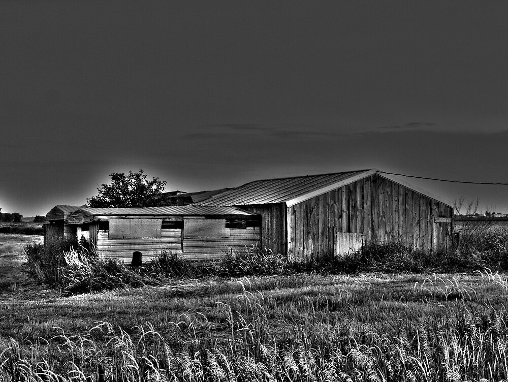 The Abandoned Collection: Forgotten Farms Series - The Shanty  by JThill