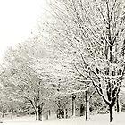 Snow Beauty by trish725