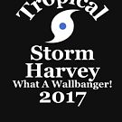 Tropical Storm Harvey What A Wallbanger 2017 Texas by t058840758