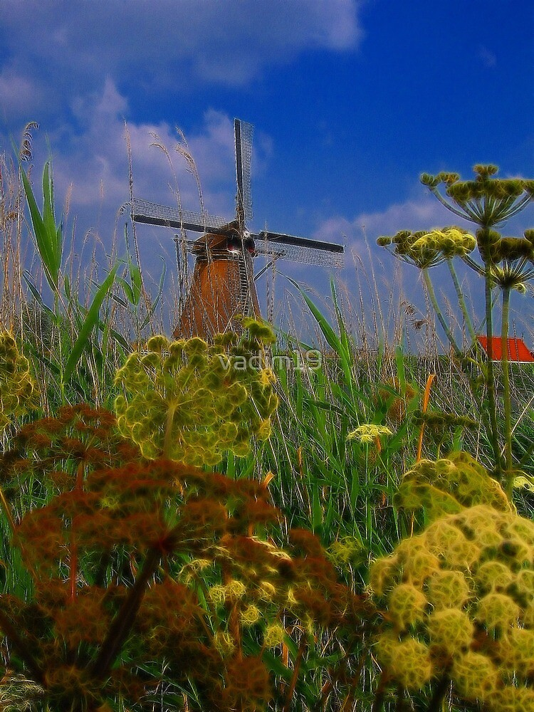 Windmill. Kinderdijk, Netherlands by vadim19