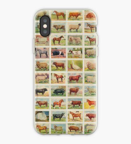 Farmyard Animals set of 75 iPhone Case