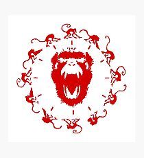 Army of the 12 Monkeys Photographic Print