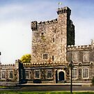 Knappogue Castle, county Clare, Ireland by Avril Brand