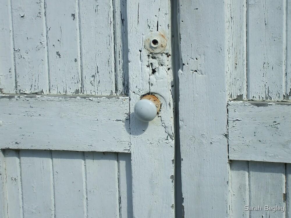 Shed Door by Sarah  Begley