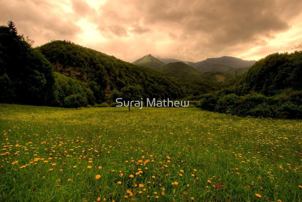 Mountains and pastures, Krottensee, Austria by Suraj Mathew