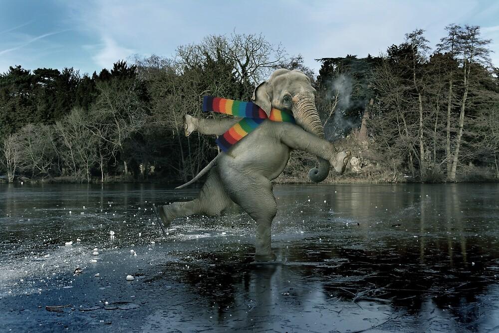Thin Ice by Matt West