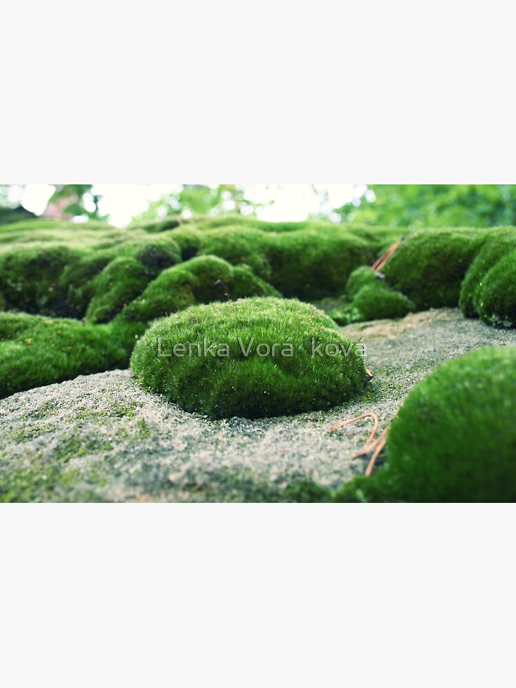Moss pillow by Trin4ever