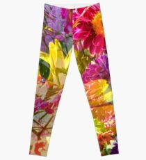 Color Burst Leggings