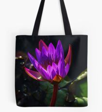 Purple water lily in a pond  Tote Bag
