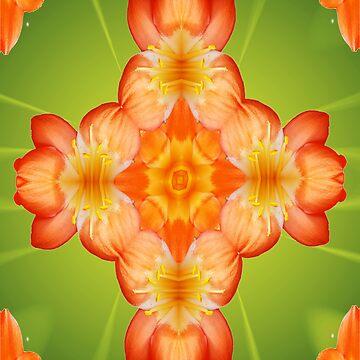 Orange Splice by lunarimage
