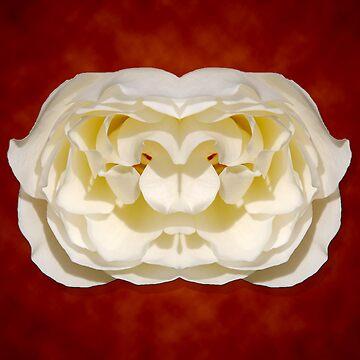 Wild Eyed Rose by lunarimage