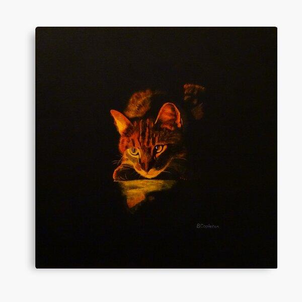 Illuminated Cat Canvas Print