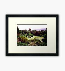 Bantry House gardens Framed Print