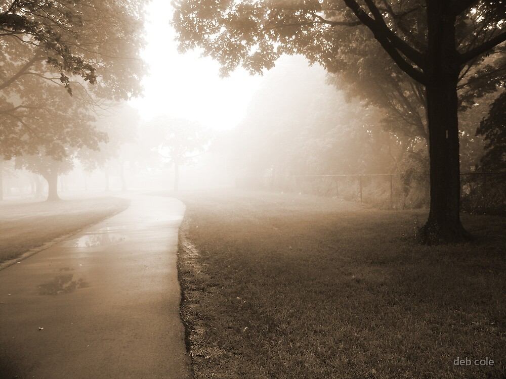 Path Into the Fog by deb cole
